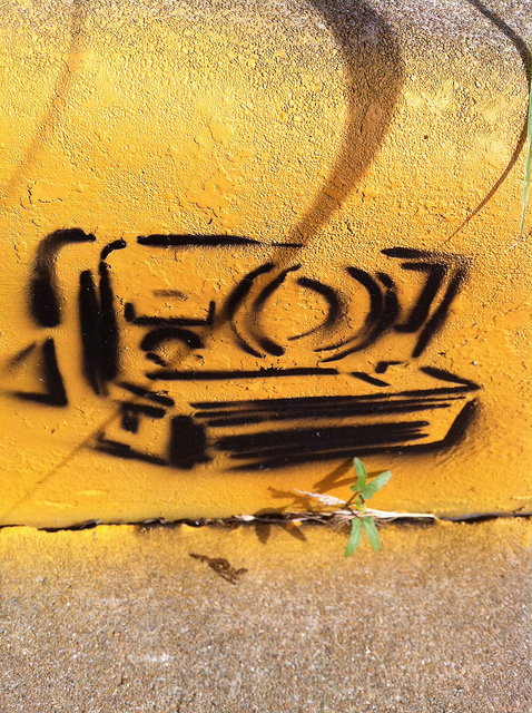 Polraid Camera street art