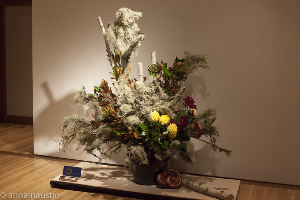 Portland Japanese Garden, 2014-0060